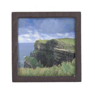 vista panorámica de un acantilado por la playa caja de regalo de calidad