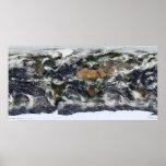 Vista por satélite detallada de la tierra impresiones