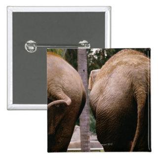 Vista posterior de elefantes asiáticos pins