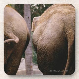 Vista posterior de elefantes asiáticos posavasos