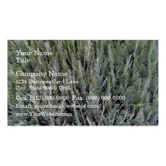 Vista superior del seto gris tarjeta de visita