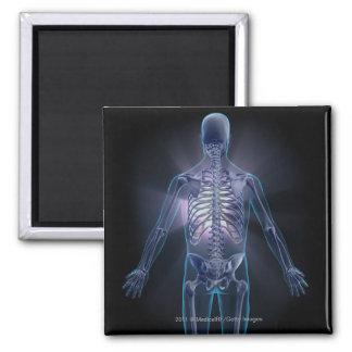 Vista trasera de un esqueleto humano imán cuadrado