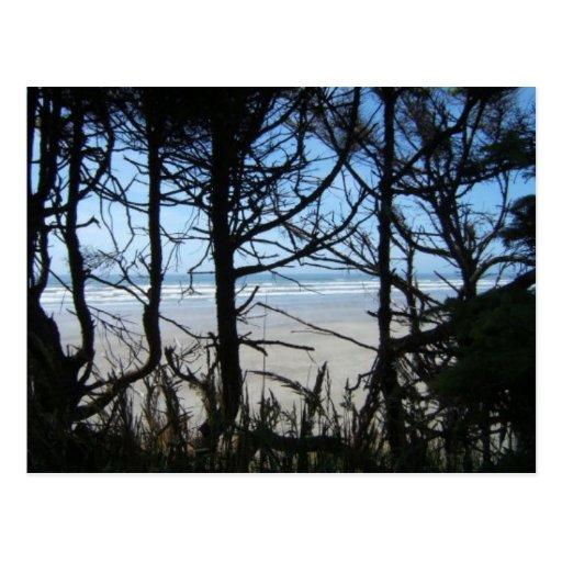 Vistas al mar tarjetas postales