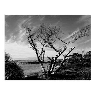 Vistas dramáticas de la postal de Oregon del lago