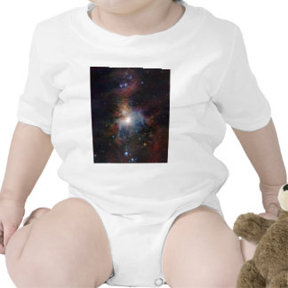 VISTA's infrared view of the Orion Nebula Baby Creeper