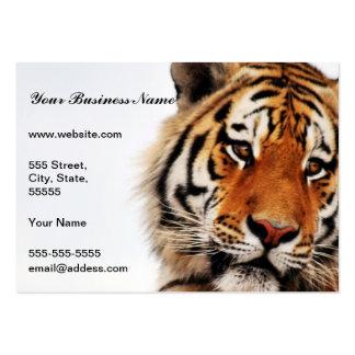 Vistazo del lado de los tigres tarjetas de visita grandes