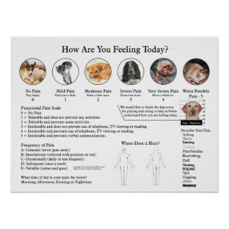 Visual Pain Scale Poster Wall Chart