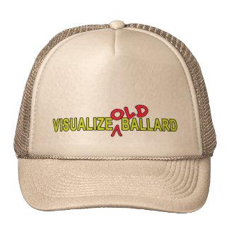 Visualize OLD Ballard Design Trucker Hat