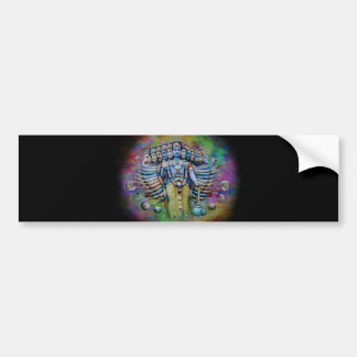 Viswarupa - the Universal Form Bumper Sticker