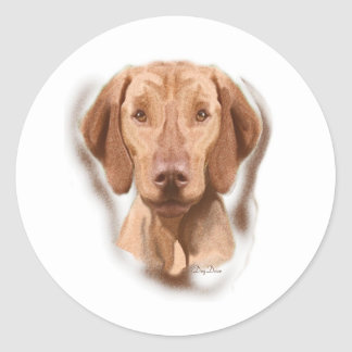 Viszla Portrait Classic Round Sticker