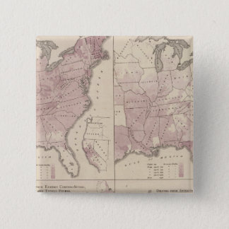 Vital Statistics, United States Census Button