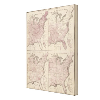 Vital Statistics, United States Census Canvas Print