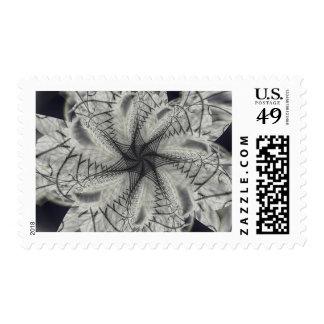 Vitalities Ruin Stamps