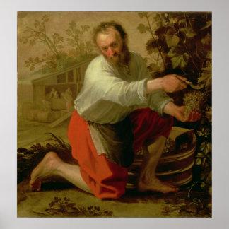 Viticultor, 1628 poster