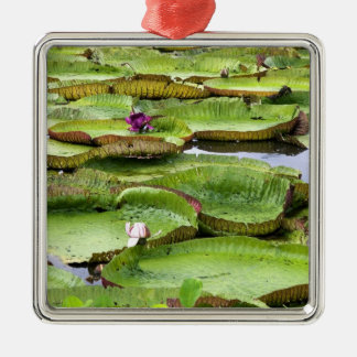 Vitoria Regis, giant water lilies in the Amazon Metal Ornament