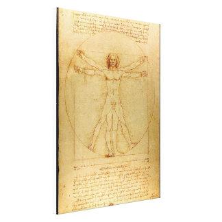 Vitruve Luc Viatour by Leonardo da Vinci Stretched Canvas Prints