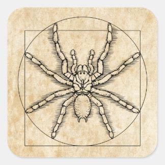 Vitruvian Arachnid Square Sticker