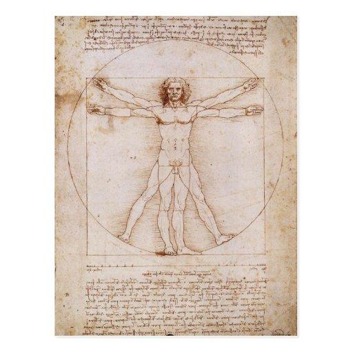 Vitruvian Man by Leonardo da Vinci Postcards