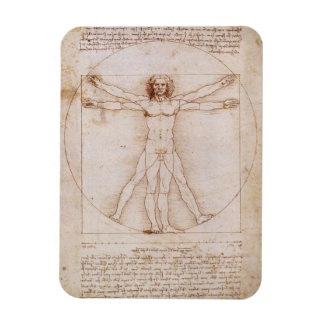Vitruvian Man by Leonardo da Vinci Magnets