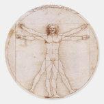 Vitruvian Man Classic Round Sticker