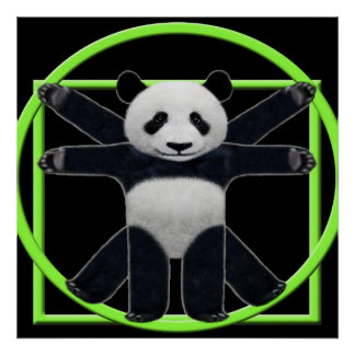 Vitruvian Panda Poster