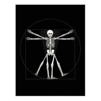 Vitruvian Skeleton Lite Postcard