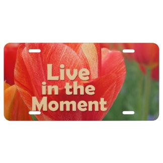 Viva en el tulipán vibrante del momento inspirado placa de matrícula