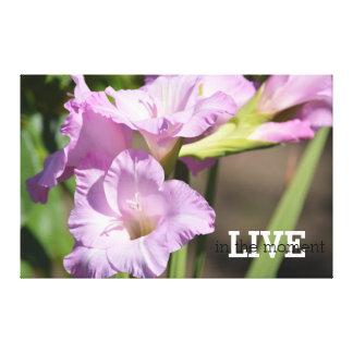 Viva en las flores del gladiolo del momento lienzo envuelto para galerías