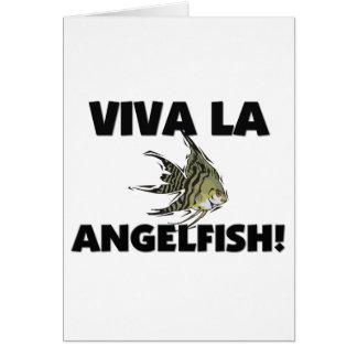 Viva La Angelfish Cards