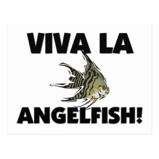 Viva La Angelfish Postcard