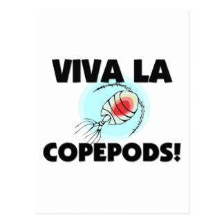 Viva La Copepods Post Cards