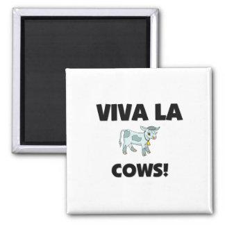 Viva La Cows 2 Inch Square Magnet