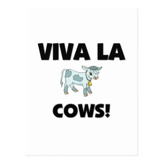 Viva La Cows Postcard