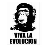 Viva la Evolucion Post Cards
