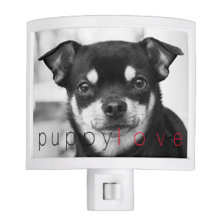 Viva La Pretty Chihuahua Nightlight