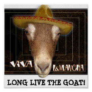 VIVA LAMANCHA, LONG LIVE THE GOAT! POSTERS