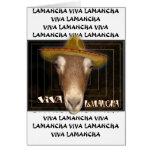 VIVA LAMANCHA - ¡VIVE DE LARGO LA CABRA! FELICITACION