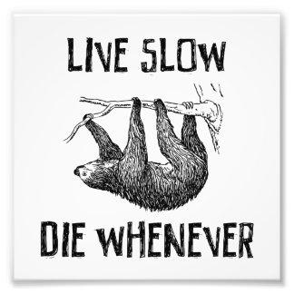 Viva lento, muera siempre que cojinete