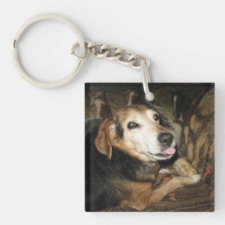 Vivaracho el beagle llavero cuadrado acrílico a una cara
