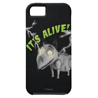 Vivaracho Está vivo iPhone 5 Case-Mate Protectores