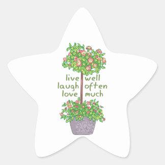 Vive bien el amor de la risa a menudo mucho calcomanías forma de estrella personalizadas