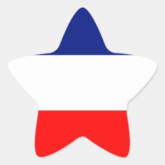VIVE LA FRANCE STRIPE20 STAR STICKER
