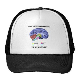 Vive la vida examinada piensa y refleja (el cerebr gorro