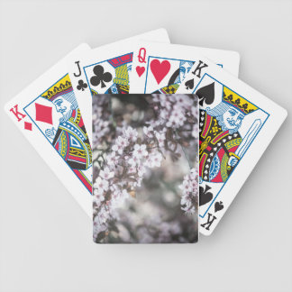 Vivid Blossom Playing card deck