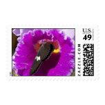Vivid Butterfly Violet Flower Postage Stamps