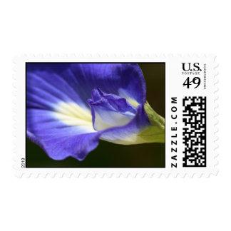 Vivid Flower Postage