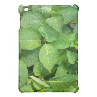 Vivid green hydrangea leaves iPad mini cover