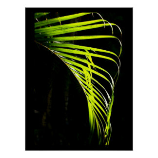 Vivid Lime Green Palm Leaves Poster