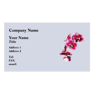 Vivid Maroon Phalaenopsis Orchids Business Card
