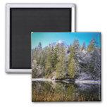Vivid Mountain Lake Winter Landscape Photo Fridge Magnets